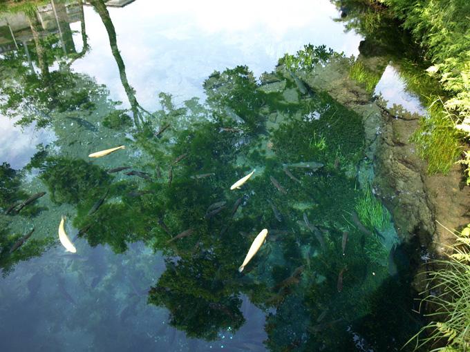 Asagiri200906198