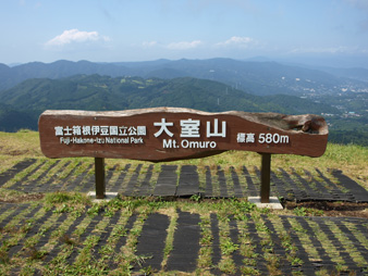 Rifuto200909069