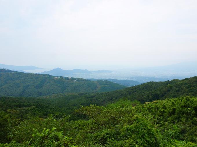 Midori20090915