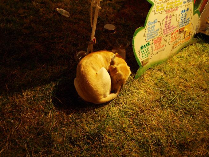Asagiri2009101014