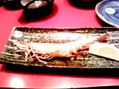 Tabemono200910177