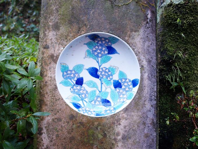 Ajisai20100115