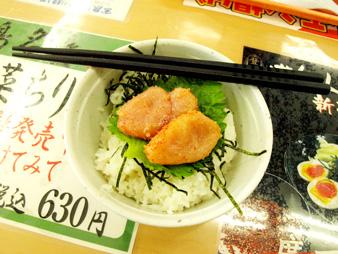 Hakata2010011513
