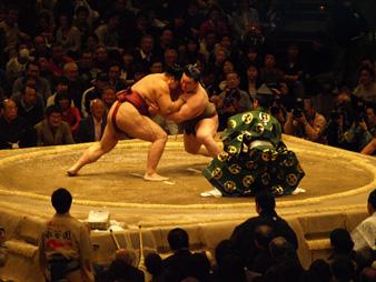 Osumou2010011729