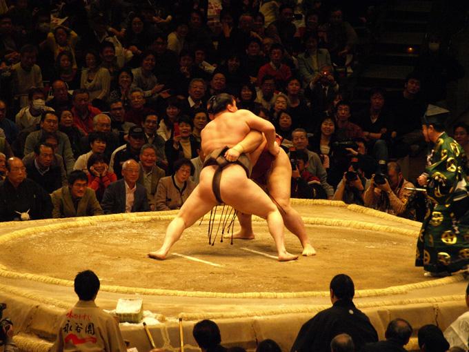 Osumou2010011731