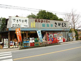 Kofun2010030711
