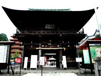 Ajisai201006221