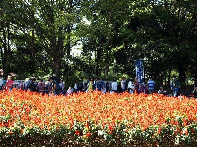Natsumusubi2010092614