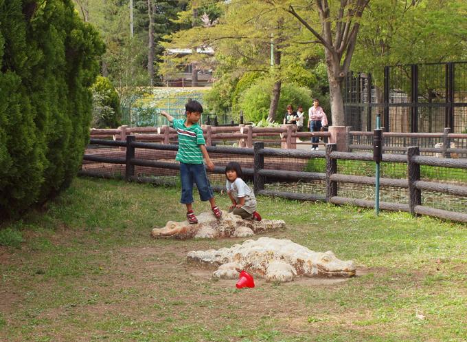 Zoo201104184