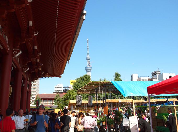 Houzuki2011070710