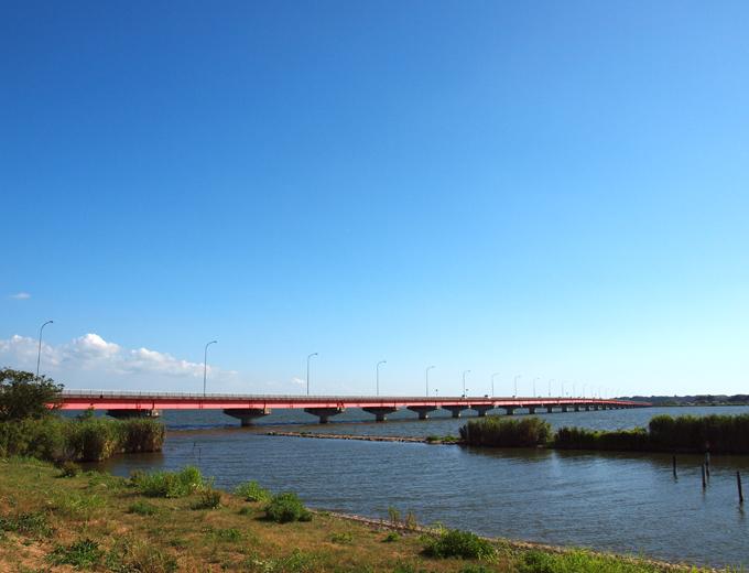 Sawaranotaisai201116