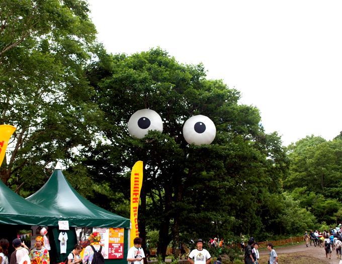 Fuji2011443