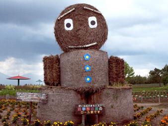 Hokkaidogururi98200