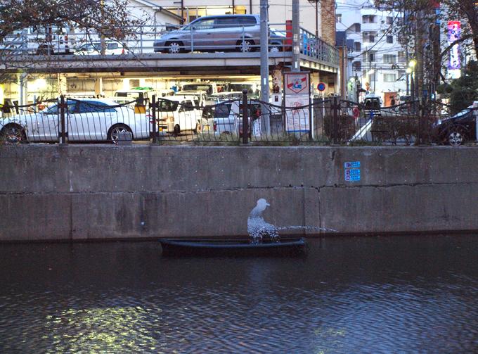 Yokohama20111010121