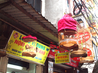 Hanoi20111010104300