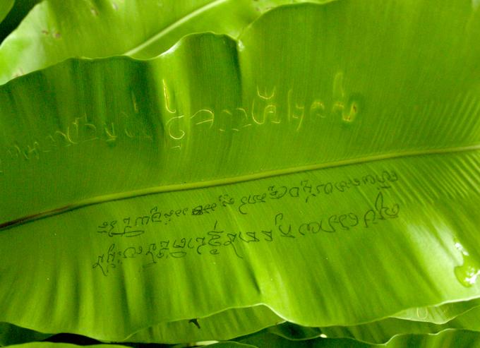 Lalala2011101039