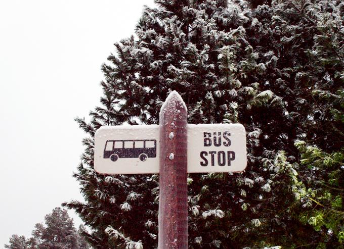 Busstopfin201112071
